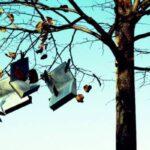 Χιούμορ: Το αλάτι της λογοτεχνίας, του Δημήτρη Στεφανάκη